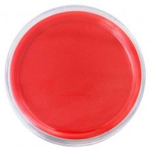 VWIN真人9863快干印台(红)快干油性印台 财务办公速干盖章印泥 透明海绵印盒